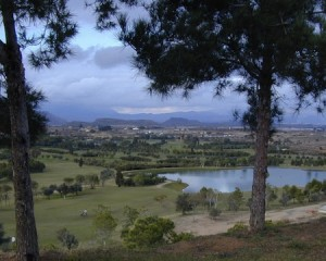 el plantio golf club